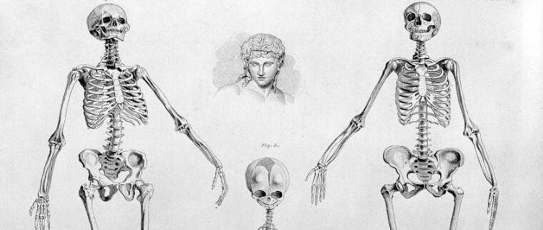 Androcentrismo y ciencia