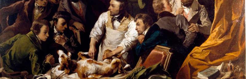 L'experimentació animal: un debat de llarga duració